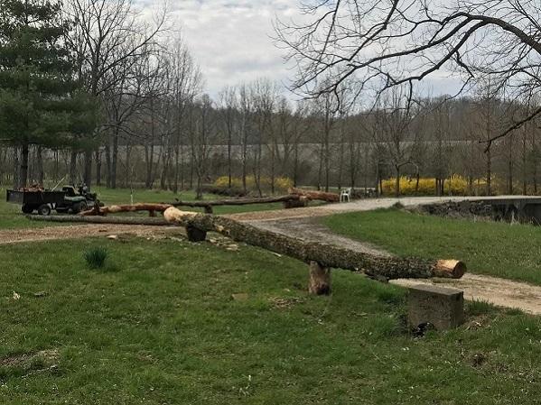Log fence b.jpg
